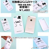 iphone5-2013-2