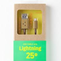 che219-232_DanboardUSB_Lightning_img_20141020_002