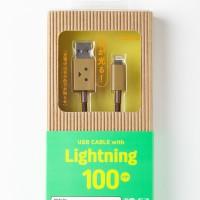 che219-232_DanboardUSB_Lightning_img_20141020_004