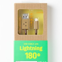 che219-232_DanboardUSB_Lightning_img_20141020_005