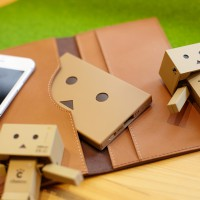 che055_PPDanboard_plate_img_20141022_002