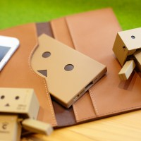 che055_PPDanboard_plate_img_20141022_003