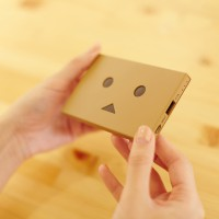 che055_PPDanboard_plate_img_20141022_004_deve
