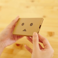 che055_PPDanboard_plate_img_20141022_005_deve
