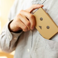 che055_PPDanboard_plate_img_20141022_007_deve