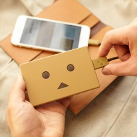 che055_PPDanboard_plate_img_20141022_008_deve