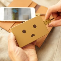 che055_PPDanboard_plate_img_20141022_009_deve