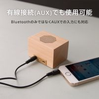 617_DANBOARD_Speaker_amazon08